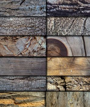 12 High Quality Wood Textures by agodesa