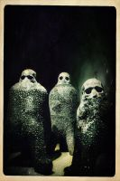 The Messengers by skorpiusdeviant