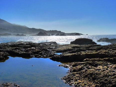 Spanish Bay, CA S4 by nyann
