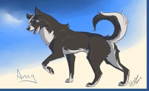 The Black Siberian Husky by AllesiaTheHedge