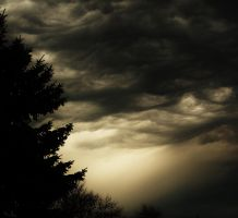 Before the Storm by Midnight-Ivory