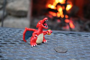 #006 Charizard by AnnalaFlame