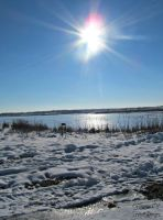 Sunny Winter Day by GlimmerofHopeImages