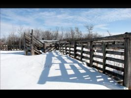 Old Corral Chute by dove-51