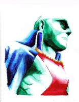 Martian Manhunter by johnpain