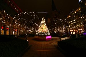 Christmas Garden by Lord-Rhesus