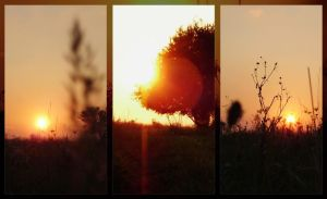 Simple sunsets... by Ikabe