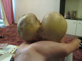This potato is a load of ass by Schluberlubs
