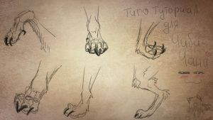 Tutorial paws wolf :D by ToshiroMenma14