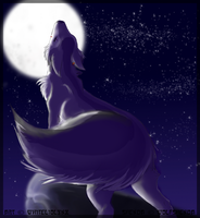 Deep into the night by WhiteLiolynx