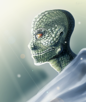 Reptilian Monk by Neptune-Nonsense