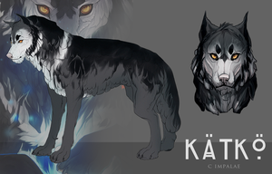 Character reference / K by impalae