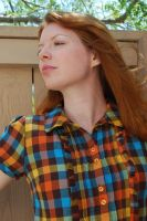 Plaid Dress Stock 5 by chamberstock