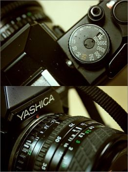 ISO Yashica by babiefortin