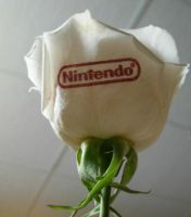 Nintendo rose by Karelliann