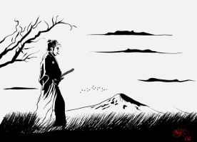 lonely samurai by deniz-ince