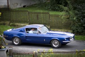 Ford Mustang Shelby GT 350 1 by FReeZeR73