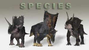 Species for Dinoraul's Pentaceratops by PaleoGuy