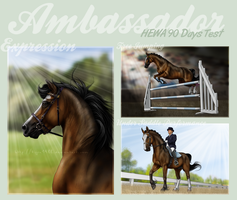 Ambassador - HEWA 90 Days Test by Tigra1988