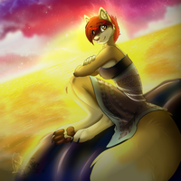 Sunset .:Cms:. by WolfRoxy
