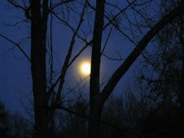 The Full Cold Moon by 12of8