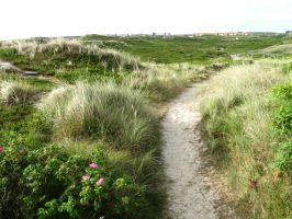 Sylt 07-21-2013_020 by Travail-de-lame