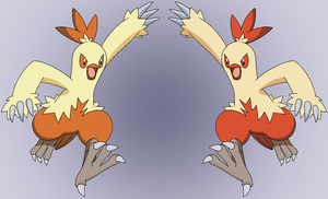 combusken shiny reflection by Thunderwest