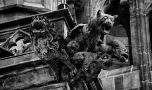 Uncontrolled proliferation of gargoyles by dcf