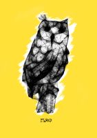 yellow owl by isrobriones