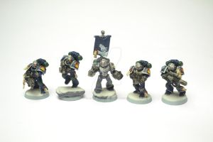 Draconis Chapter Sternguard by Atreius-Lux