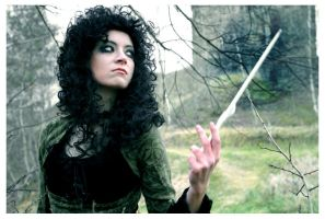 Bellatrix Lestrange by elsch