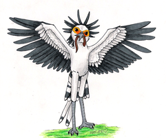 Secretary Bird by TornFeathers