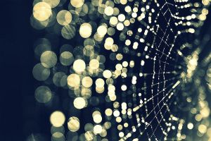 Web Bokeh by inertia09