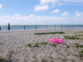 Pink Ring on the Beach by usedbooks