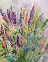 Lupines sketch by Alekra81