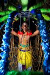 Enter the Kavadi by Draken413o