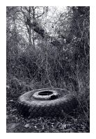 Old truck tire by Barefeet-in-the-rain