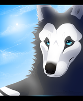 C: HowlingWolfSong by suohii