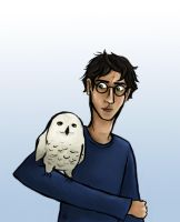 Harry and Hedwig by fishbizkit