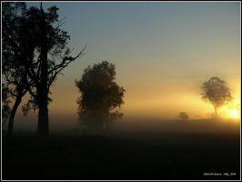 Misty Sunrise by FireflyPhotosAust