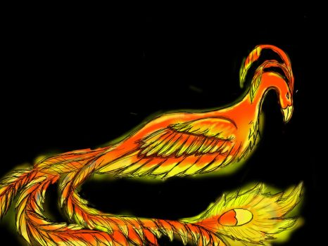Phoenix  by acetrack1998