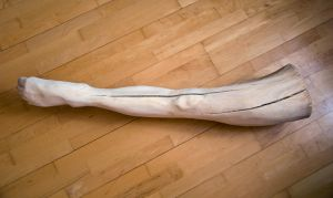 Wooden Leg by Hyoko-x3