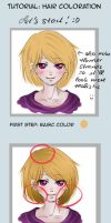 Tutorial Hair Coloration  by Sany95