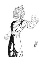 Vegetto by Onore-Otaku