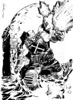 CROSSBONES by DeclanShalvey