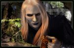 Prince Nuada - An Agreement by GabbyLeithsceal