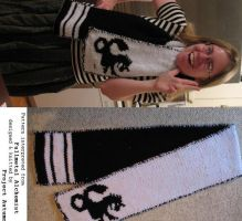 Fullmetal Alchemist Scarf v. 2 by projectautumn