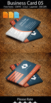 Developer Web Business Card by artgh