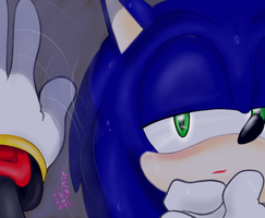 .:Sonadow:. Reflecting Desire by SEGAMew