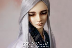 This Love Is Not For Me - Seiya 4 by snow-kaguya